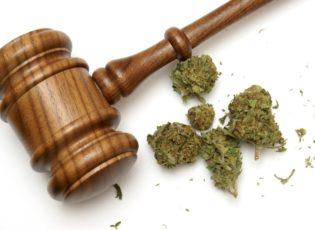 Despite Gains in the Legal Marijuana Industry, Major Investors Remain Cautious